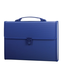Plastic A4 briefcase, 13 compartments, with piping Brauberg