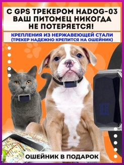 Animal tracker Hadog