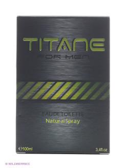 Туалетная вода FOR MEN TITANE 100ML SPRAY CHRISTINE DARVIN