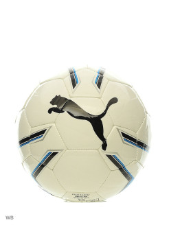 Мяч Pro Training 2 MS ball PUMA
