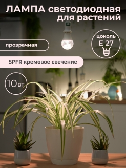 Light bulb Uniel