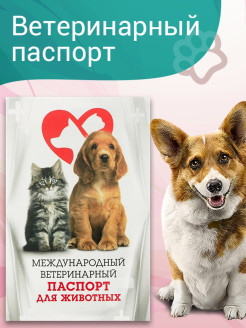 Veterinary passport KD