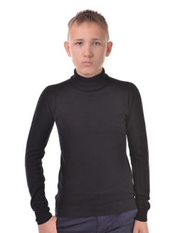 Turtleneck, without elements R&I