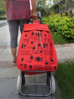 Trolley bag SOKOLTEC